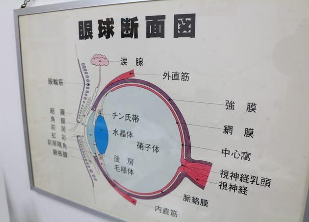 洋光台眼科クリニック(写真2)
